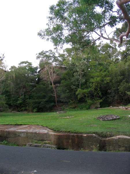 Landscape Architecture |  6